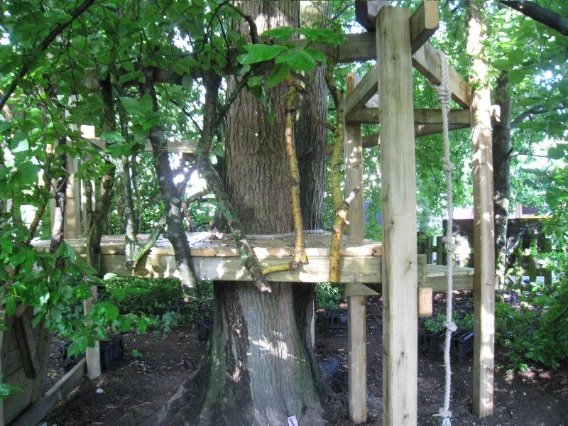 Tree House_03