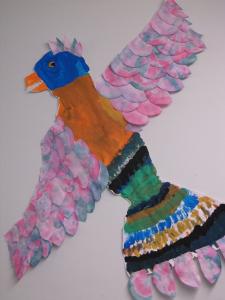 rainbow bird 4